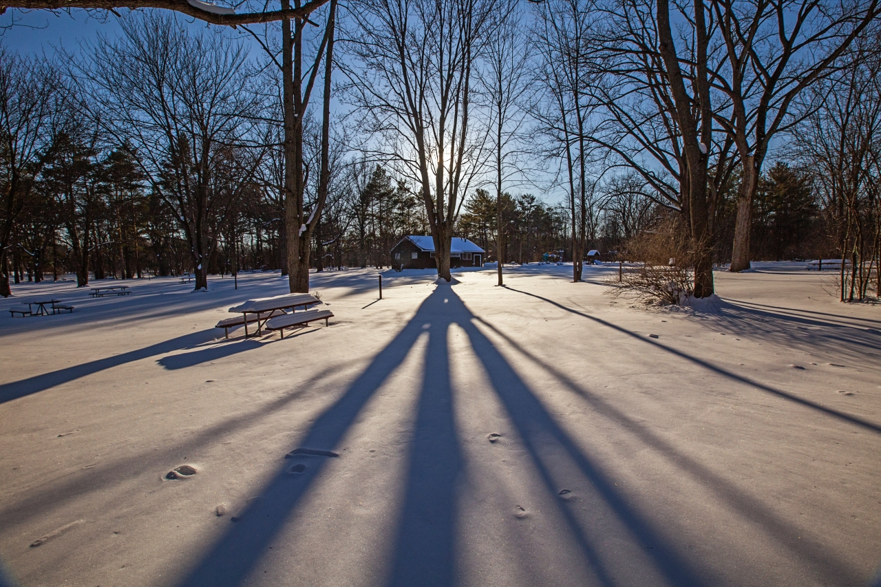 Snow covered shadows at Cayuga Lake State Park (photo)